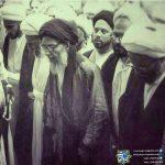 دیدگاه سیاسی آیت الله سید محسن حکیم
